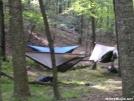 Lamberts Meadow Camp site by MedicineMan in Hammock camping
