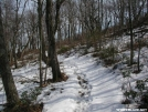 Rockfish Gap Approach from the North by MedicineMan in Views in Virginia & West Virginia