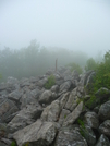 On The Way To Bake Oven Knob