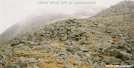 Scree and Rock in Whites by Kozmic Zian in Trail & Blazes in New Hampshire