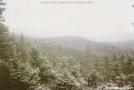 Maine Frost by Kozmic Zian in Trail & Blazes in Maine