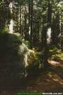 Deep In the Wilderness by Kozmic Zian in Trail & Blazes in Maine