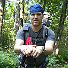 June Section Unicoi to Winding Stair Gap by buzzamania in Section Hikers