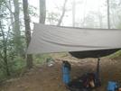 Slaughter Creek Tentsite by buzzamania in Hammock camping