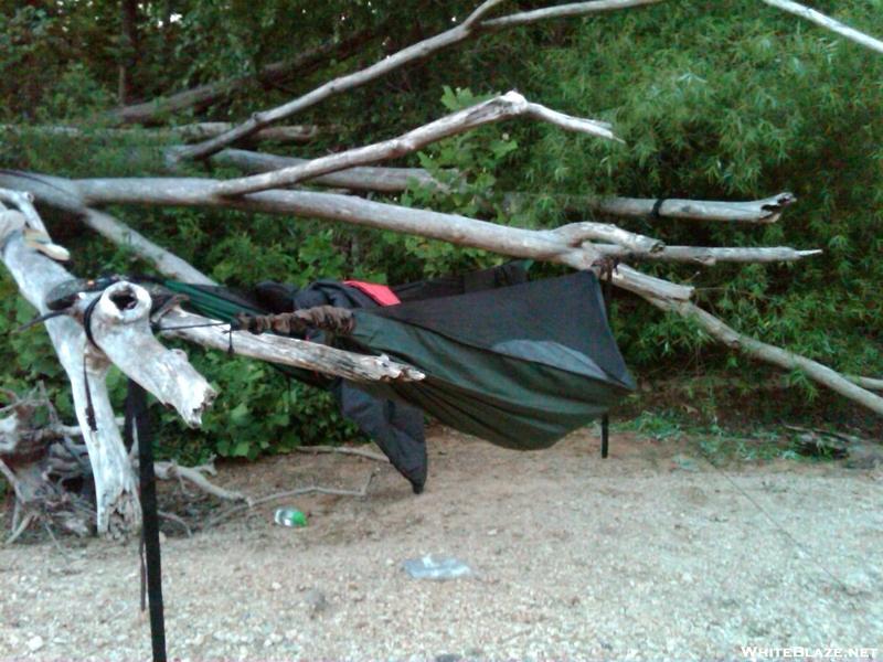 Hammocks Hanging In The Driftwood.