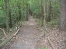 Hobbs Cabin Fall Hike