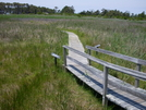 Bodie Island Trail by Odd Thomas in Views in North Carolina & Tennessee