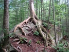 At 2009 by Whiskey Ninja in Thru - Hikers