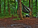 Itgoesdrip107 282443 by Dow in Hammock camping
