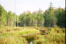 Three Ponds Trail