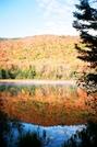 Fall Foliage, White Mountains