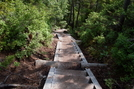The Wooden Stairs On The Osseo Trail by Homer&Marje in Other Trails