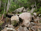 Steep! by Homer&Marje in Trail & Blazes in New Hampshire