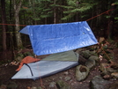 New Bivvy For Solo's by Homer&Marje in Gear Review on Shelters