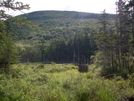 Franconia Brook Trail by Homer&Marje in Other Trails
