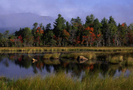 Katahdin2 by Stumpcarver in Views in Maine