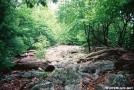 Pa rocks and trees by Old Hickory MH in Views in Maryland & Pennsylvania