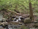 Stream by Old Hickory MH in Views in Virginia & West Virginia