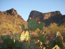 Picacho Peak by tumbleweed6789 in Other Trails