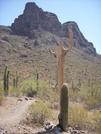 Picacho Peak Arizona