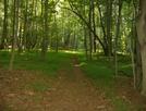 Elk Neck State Park by dudeijuststarted in Other Trails