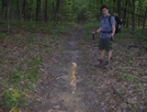 Mike And The Cat by dudeijuststarted in Section Hikers
