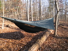 Hennessey Expedition by Spider in Hammock camping