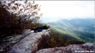 Napping on Tinker Cliffs by Hikehead in Views in Virginia & West Virginia