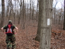Ronin On Trail North Of Port Clinton by ~Ronin~ in Trail & Blazes in Maryland & Pennsylvania