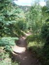 Barr's Trail ~ Well Maintained by tom_alan in Other Trails