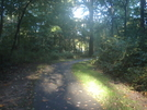 Columbia Md Lake Trails by CowHead in Other Trails