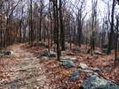 Maryland by CowHead in Day Hikers