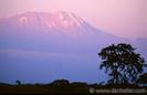 Mt. Kilminjaro, Africa