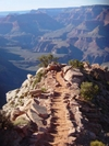 South Kalibab Trail In The Grand Canyon by rdsoxfan in Other Galleries
