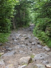 Tuckermans Ravine Trail, Mt. Washington, Nh by rdsoxfan in Other Galleries