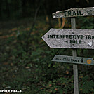 Side Trail at Bears Den Hostel by Heald in Views in Virginia & West Virginia