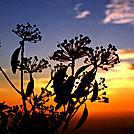 Sunrise up high by Heald in Views in Virginia & West Virginia