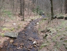 Water Source Near Standing Indian Shelter. by MintakaCat in North Carolina & Tennessee Shelters
