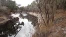 Florida Trail Along The Suwannee River by Ladytrekker in Florida Trail