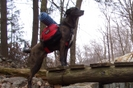 Jack My Dog by Keith and Jack in Views in New Jersey & New York