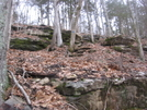 Winter Hikes In Tennesee