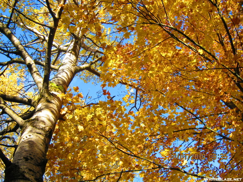 Fall Colors On The Superior Hiking Trail (nct)
