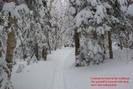 2008-02b1-Cog Rail Station Trail Head by Highway Man in Views in New Hampshire