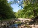 2006-08-Woodland Valley Stream