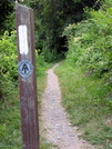Trail As It Heads Off From C&o Canal by hikingfieldguide in Trail & Blazes in Maryland & Pennsylvania