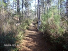 Swampfox Passage- by hikingshoes in Day Hikers