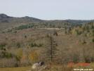 mount rogers by Frog in Views in Virginia & West Virginia