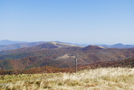 Roan Mountain Area