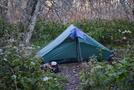 Hillenberg Rajd Tent