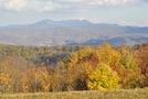 Roan Mountain Area